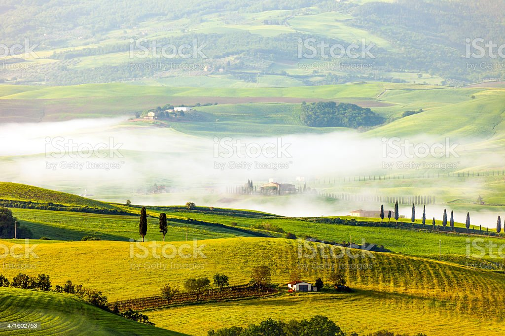 Rolling Landscape With Morning Fog, Val d'Orcia, Tuscany, Italy stock photo
