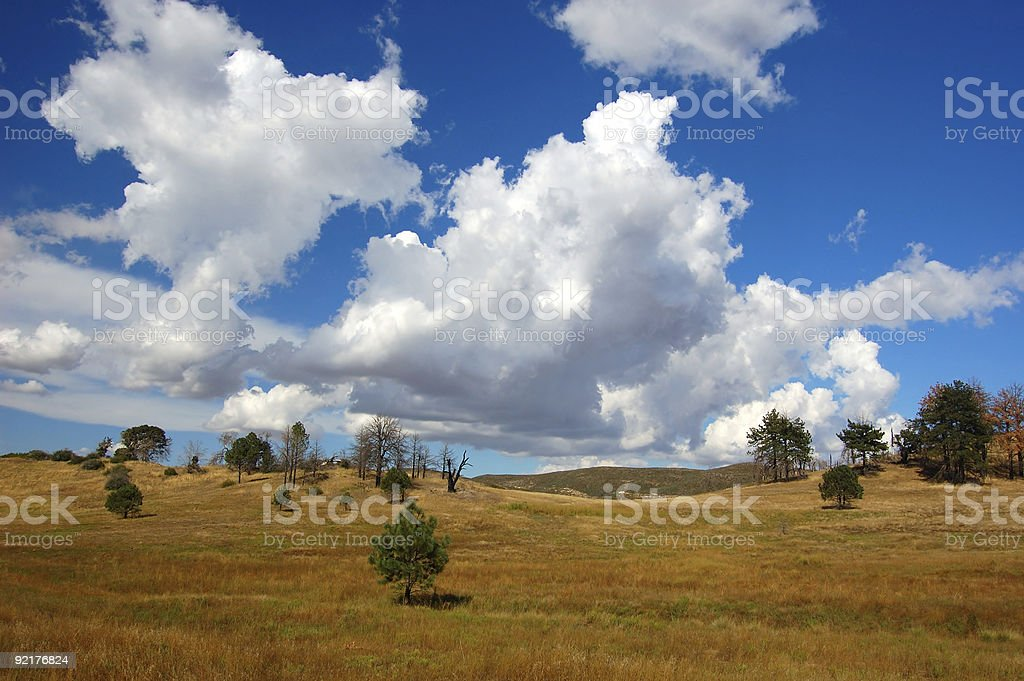 Rolling Meadow stock photo