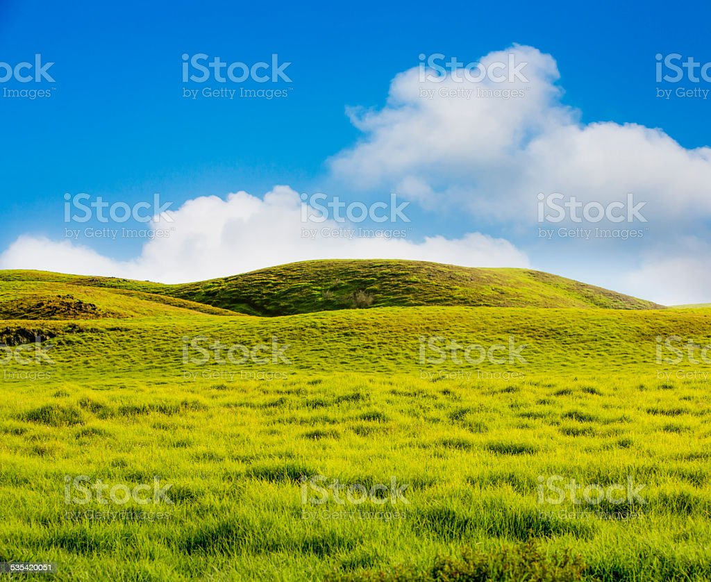 Rolling Mountain Meadow stock photo