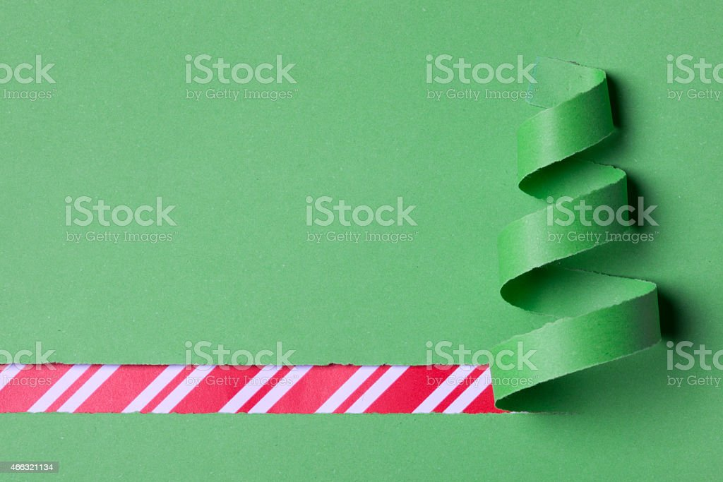 rolling paper made green christmas tree stock photo