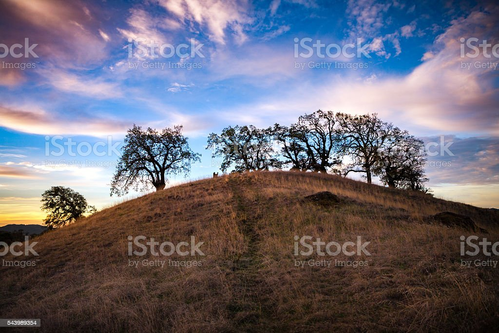 Rolling Pastoral Hills At Dawn, Orr Springs Road, Mendocino County royalty-free stock photo