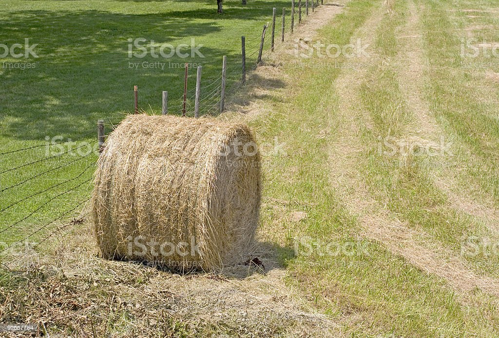 Rolling Pasture, Hay Bale royalty-free stock photo