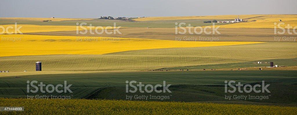 Rolling Prairie stock photo