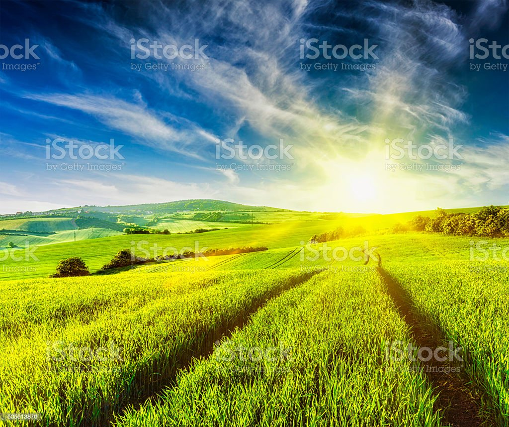 Rolling summer landscape stock photo