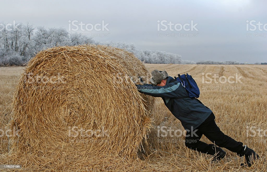 Rolling hay royalty-free stock photo