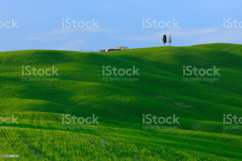 Rolling Tuscany Landscape in Spring royalty-free stock photo