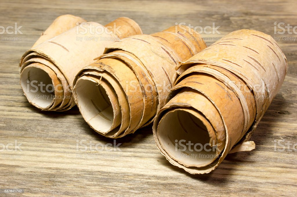 Rolls of birch Bark on wooden stock photo