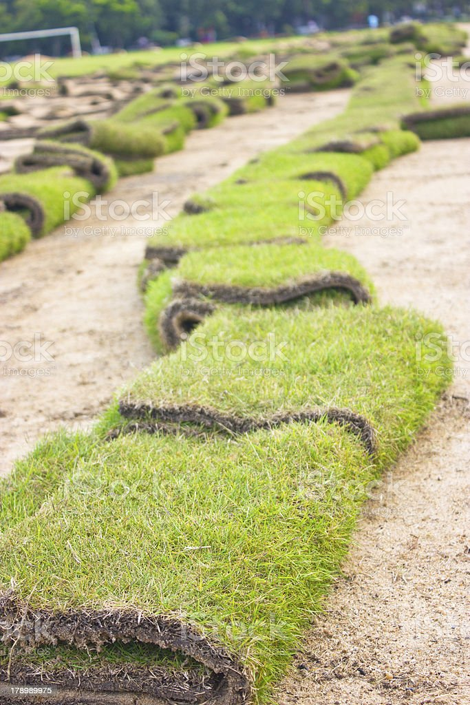Rolls of green grass, laying in progress. stock photo