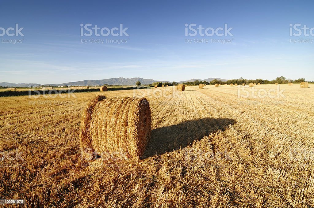Rolls of hay against mountains. royalty-free stock photo