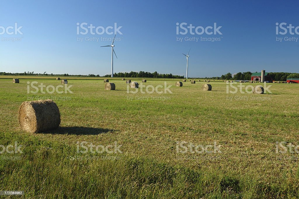 Rolls of hay with windmills in the background, Ontario, Canada royalty-free stock photo