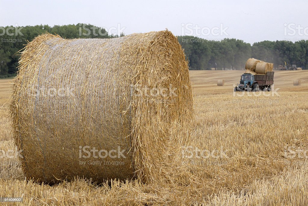 Rolls of straw and tractor royalty-free stock photo