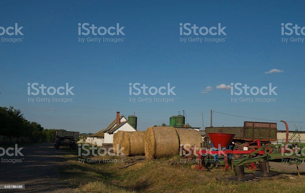 Rolls of wheat stock photo