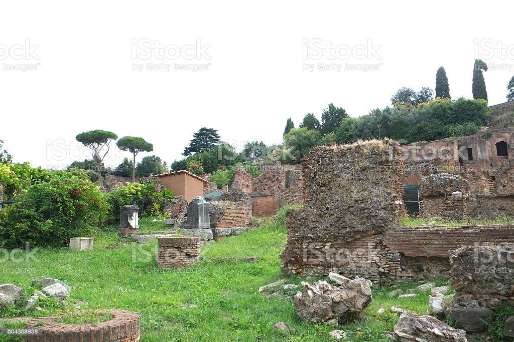 Roma - Palatine Hill stock photo
