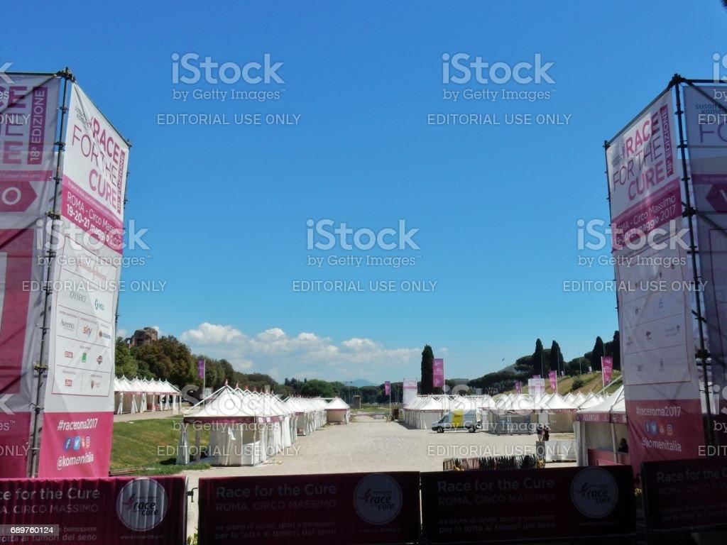 Roma -  Race for the Cure al Circo Massimo stock photo