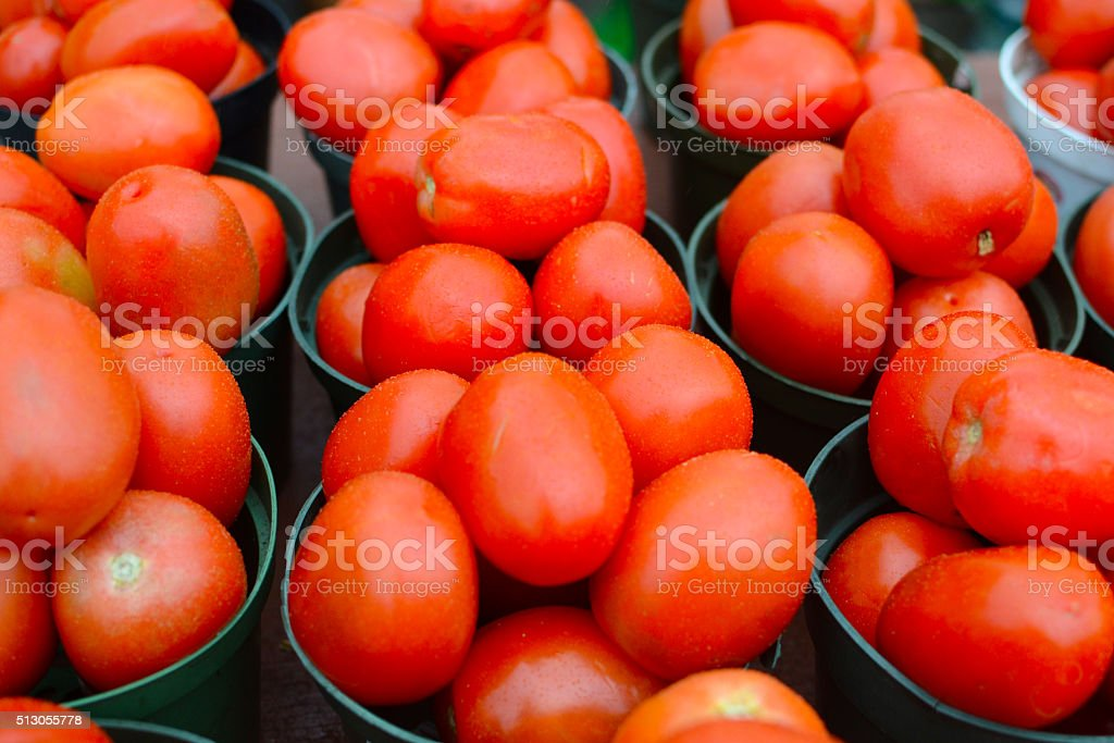 Roma tomato (Solanum lycopersicum 'Roma') stock photo