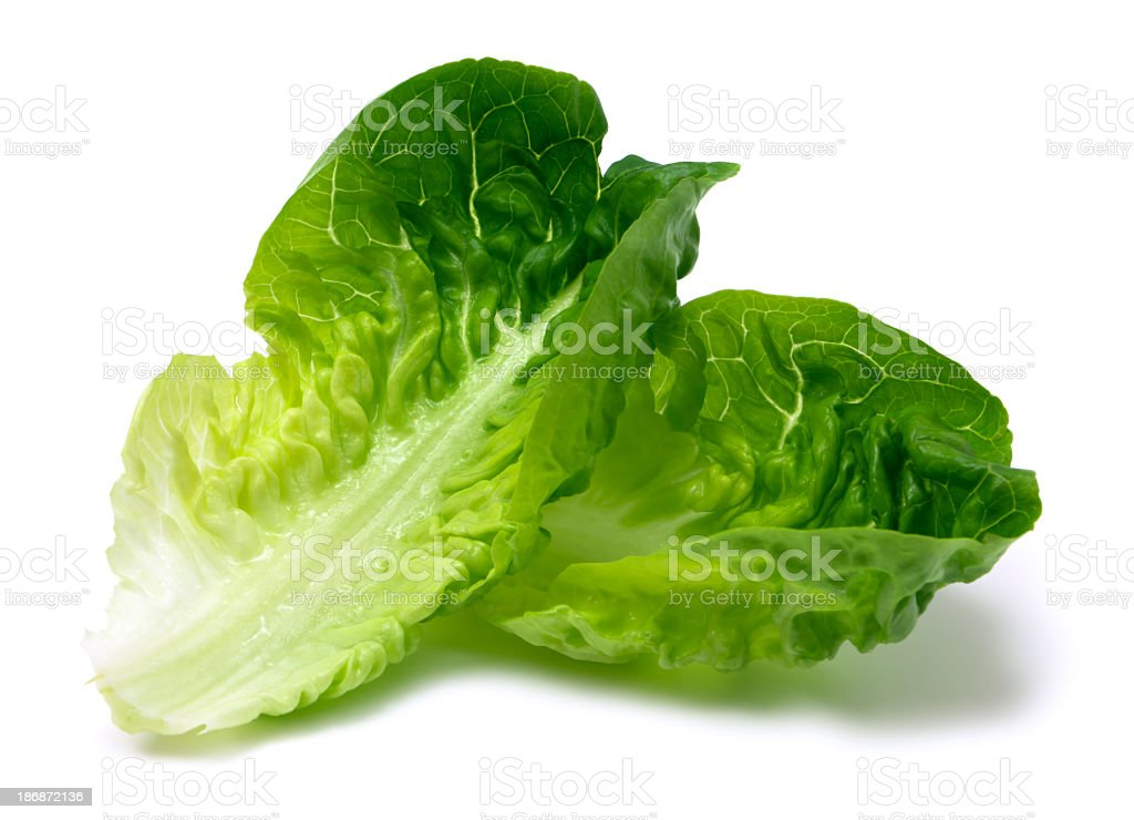 Romaine lettuce leaf royalty-free stock photo