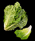 Romaine Lettuce(+clipping path)
