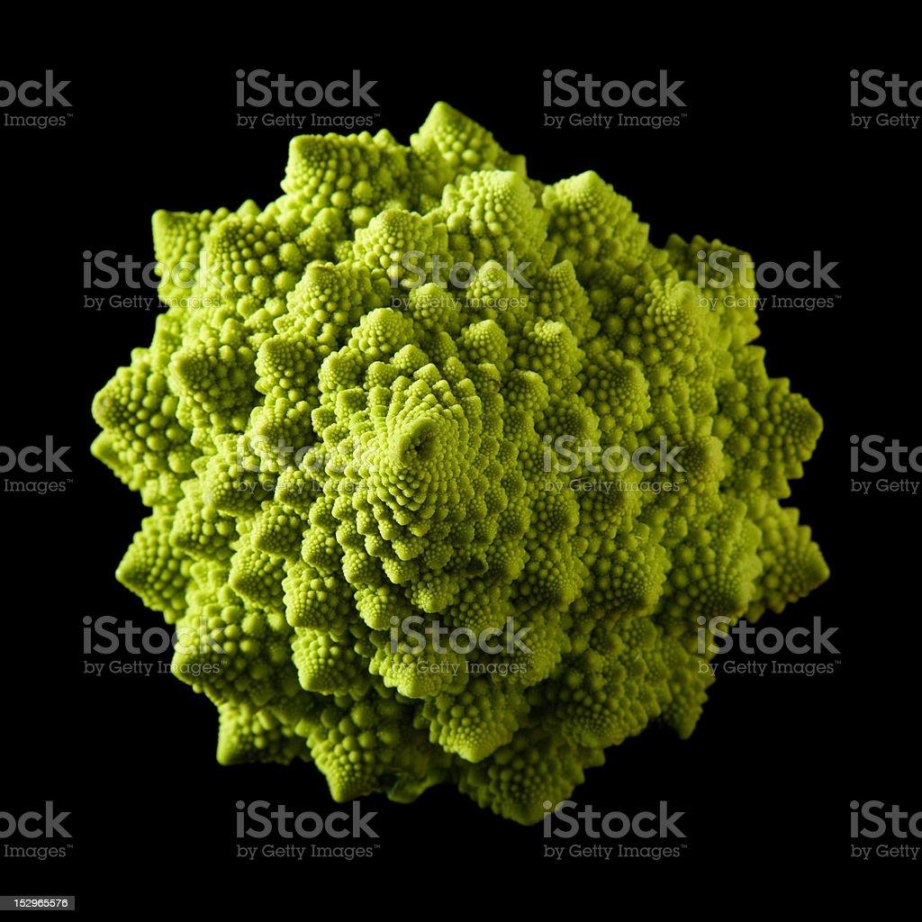 Roman broccoli royalty-free stock photo