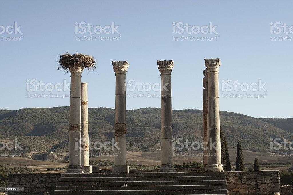 Roman Capitol at Volubilis stock photo