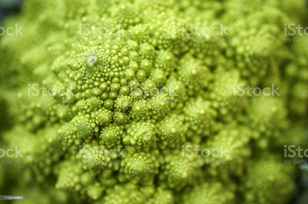 Roman Cauliflower royalty-free stock photo
