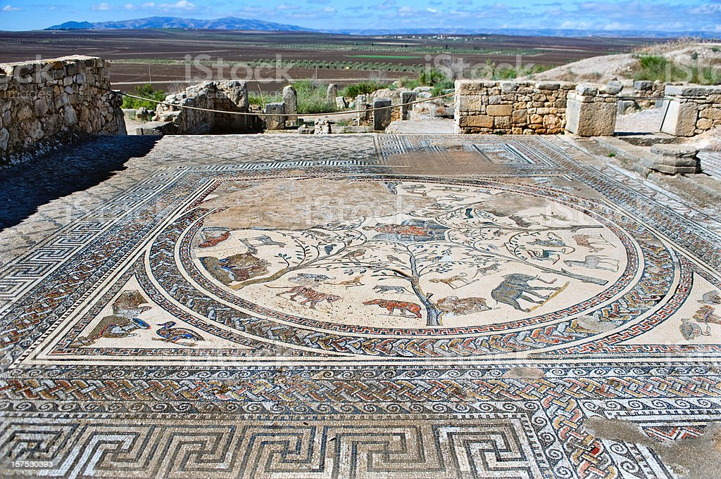 Roman Mosaic at Volubilis, Morocco stock photo