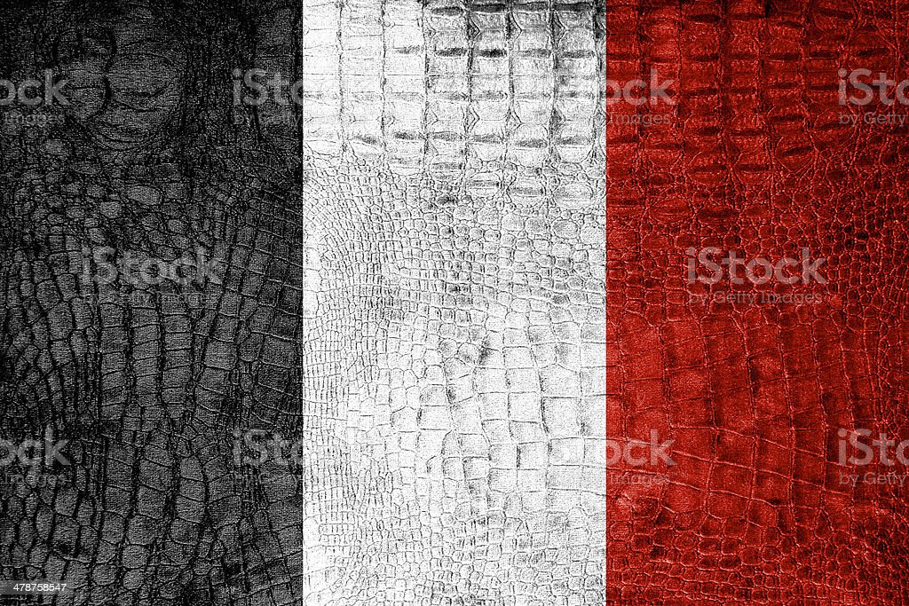 Roman Republic Flag in 1798 painted on luxury crocodile texture stock photo