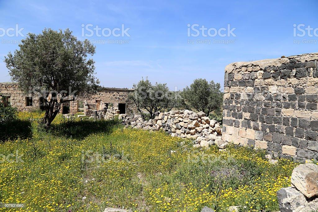 Roman ruins at Umm Qais (Umm Qays) --Jordan stock photo