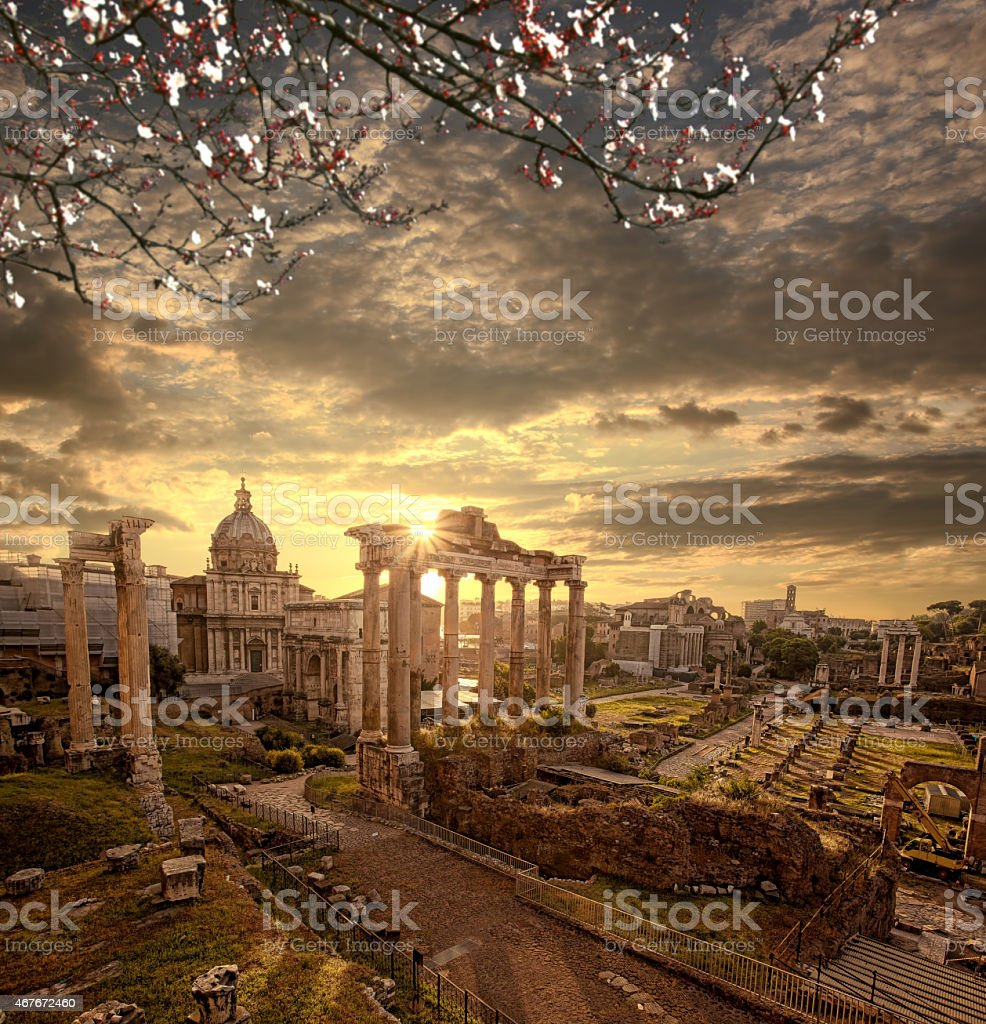 Roman ruins with blossomed tree, Rome, Capital city of Italy stock photo