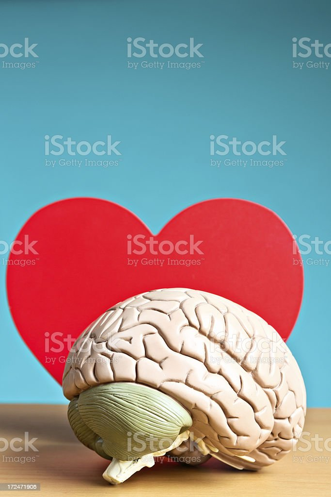 Romance? It's all in your head! Model brain with heart. royalty-free stock photo