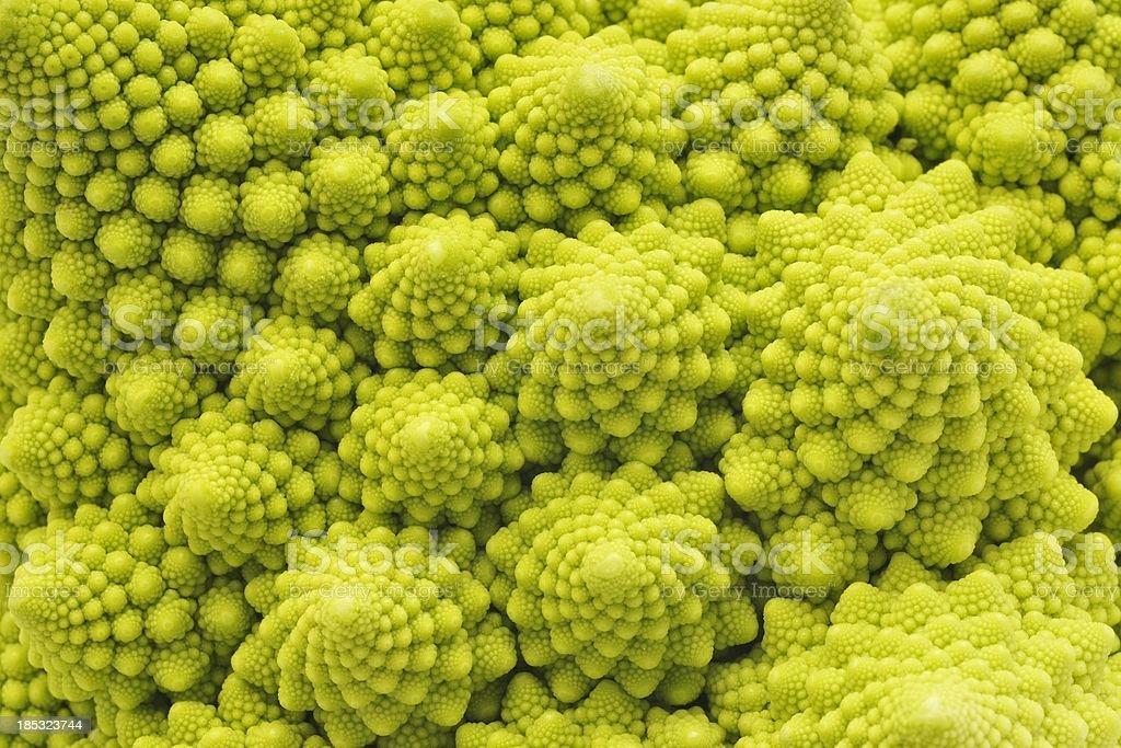 Romanesco Broccoli close-up stock photo