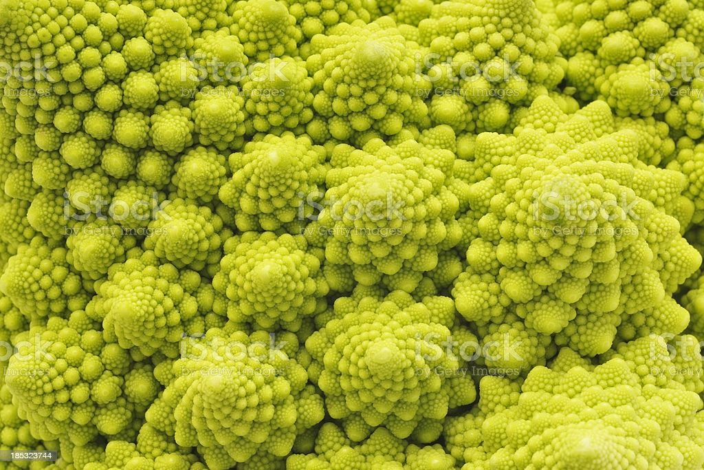 Romanesco Broccoli close-up stock photo