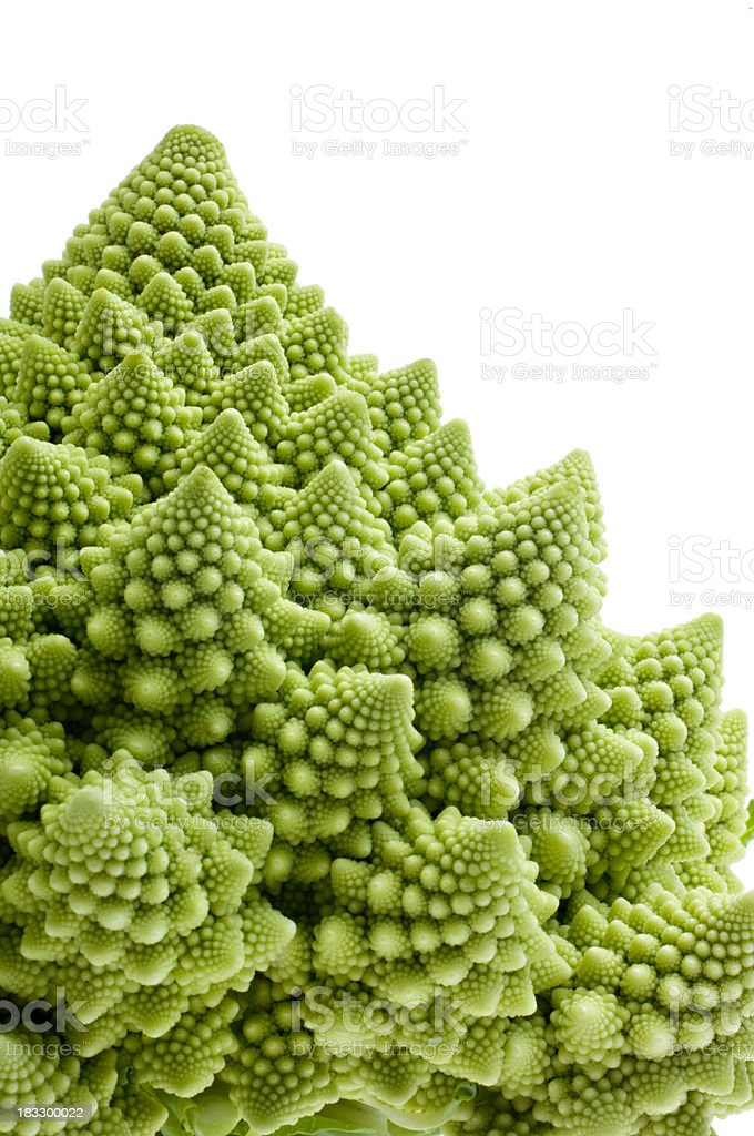 Romanesco Broccoli Isolated Against White. royalty-free stock photo