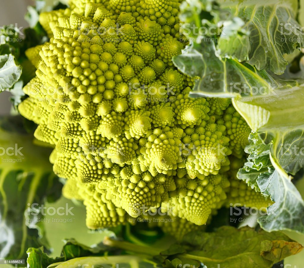 Romanesco broccoli, or Roman cauliflower stock photo