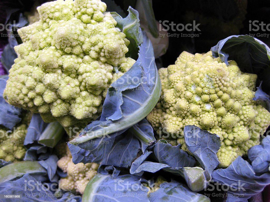 Romanesco Cauliflower Close-Up stock photo