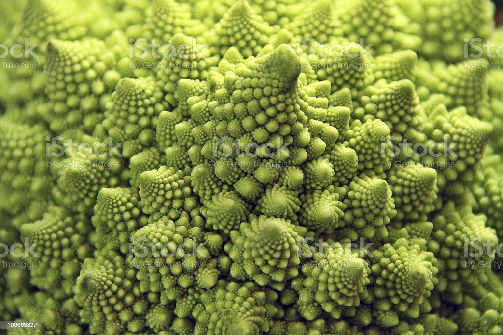 romanesco cauliflower royalty-free stock photo
