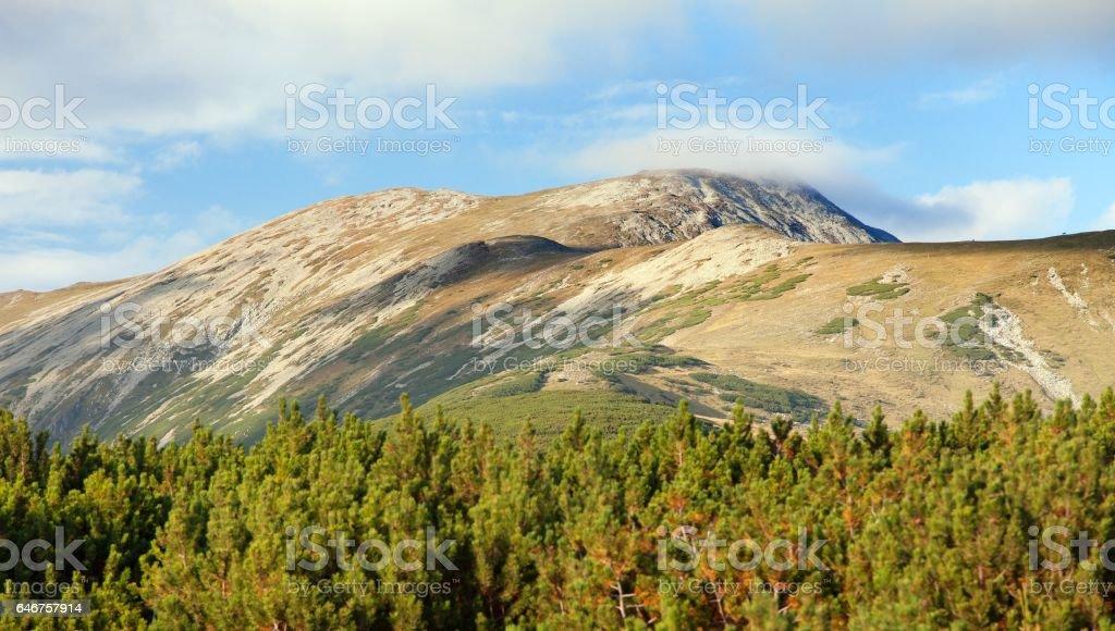 romanian Carpathi, Retezat mountains stock photo