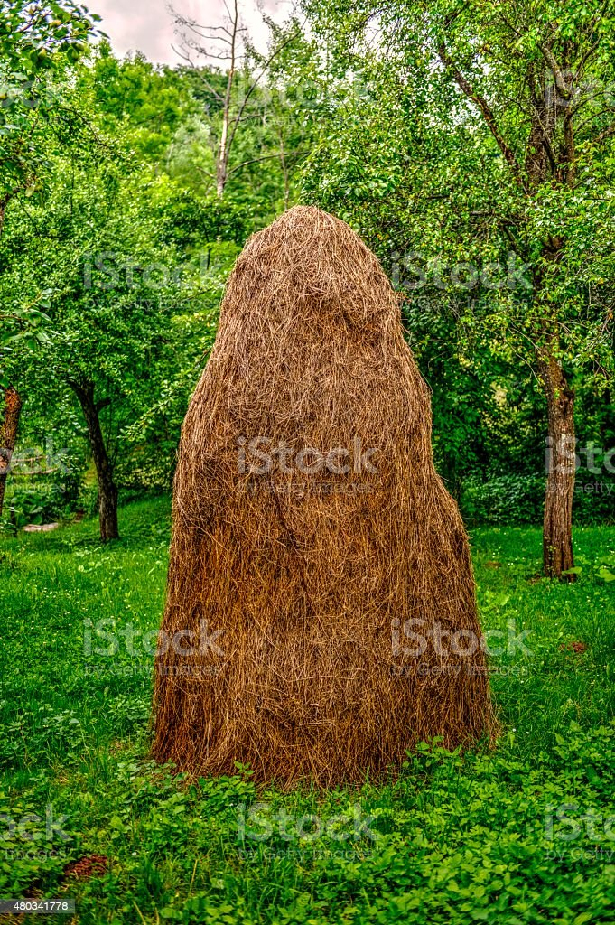 Romanian Haycock - Conical Heap Of Hay stock photo
