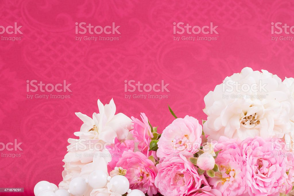 romantic background with rose royalty-free stock photo