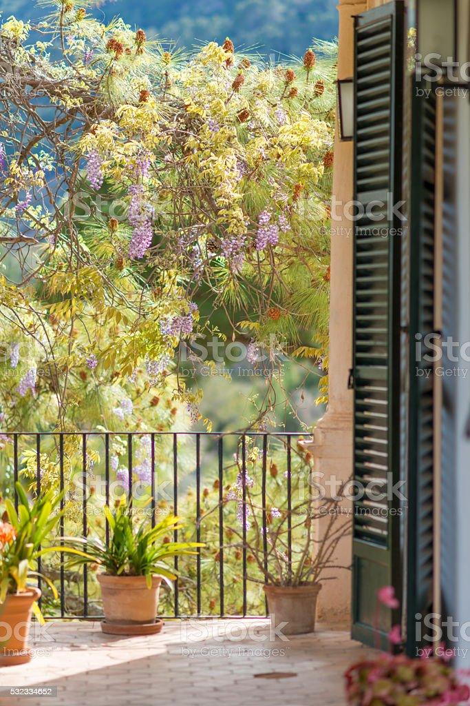 romantic balcony with pine and window shutter (persiana) stock photo