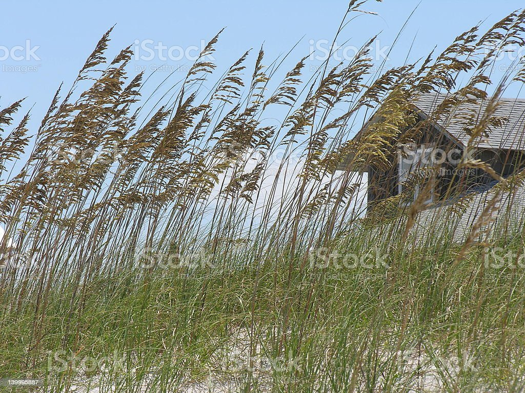 Romantic Beach Cottage Hideaway stock photo