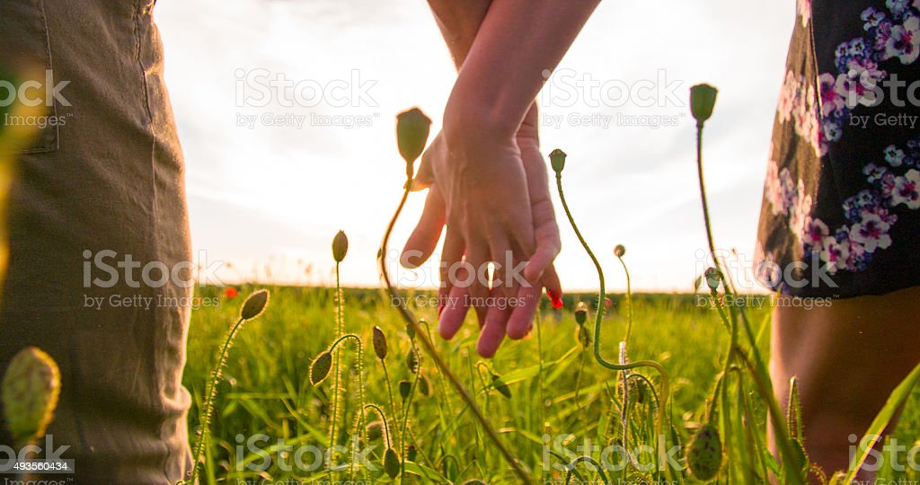 Romantic Couple In The Poppy Field stock photo