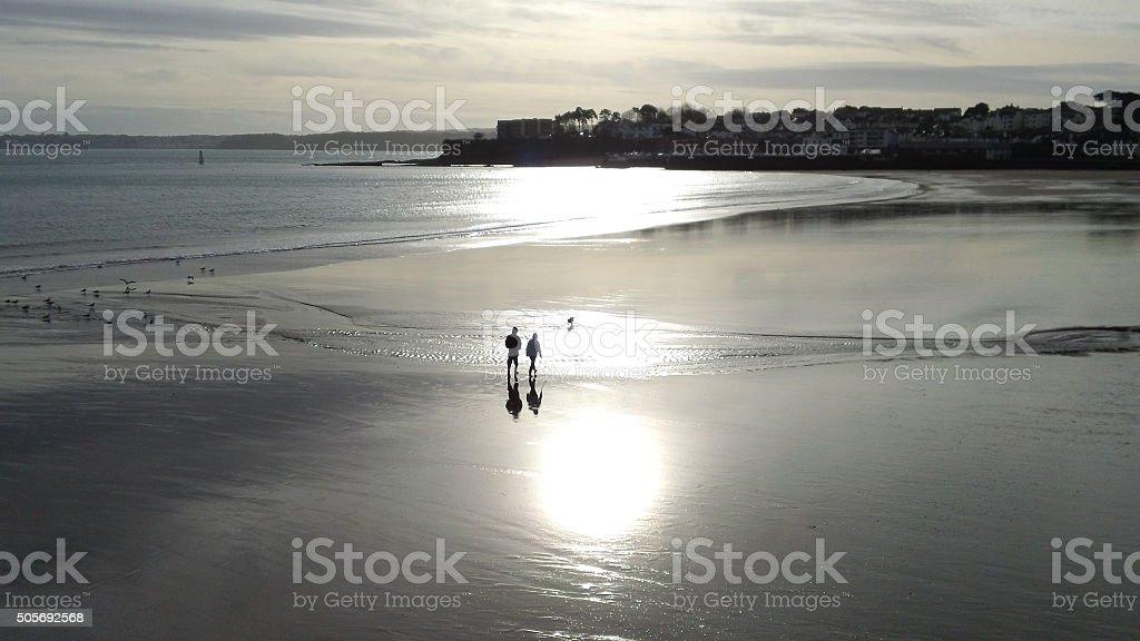 Romantic couple on a beach with their dog stock photo