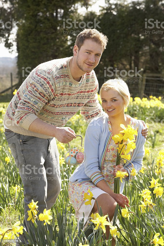 Romantic Couple Picking Spring Daffodils royalty-free stock photo