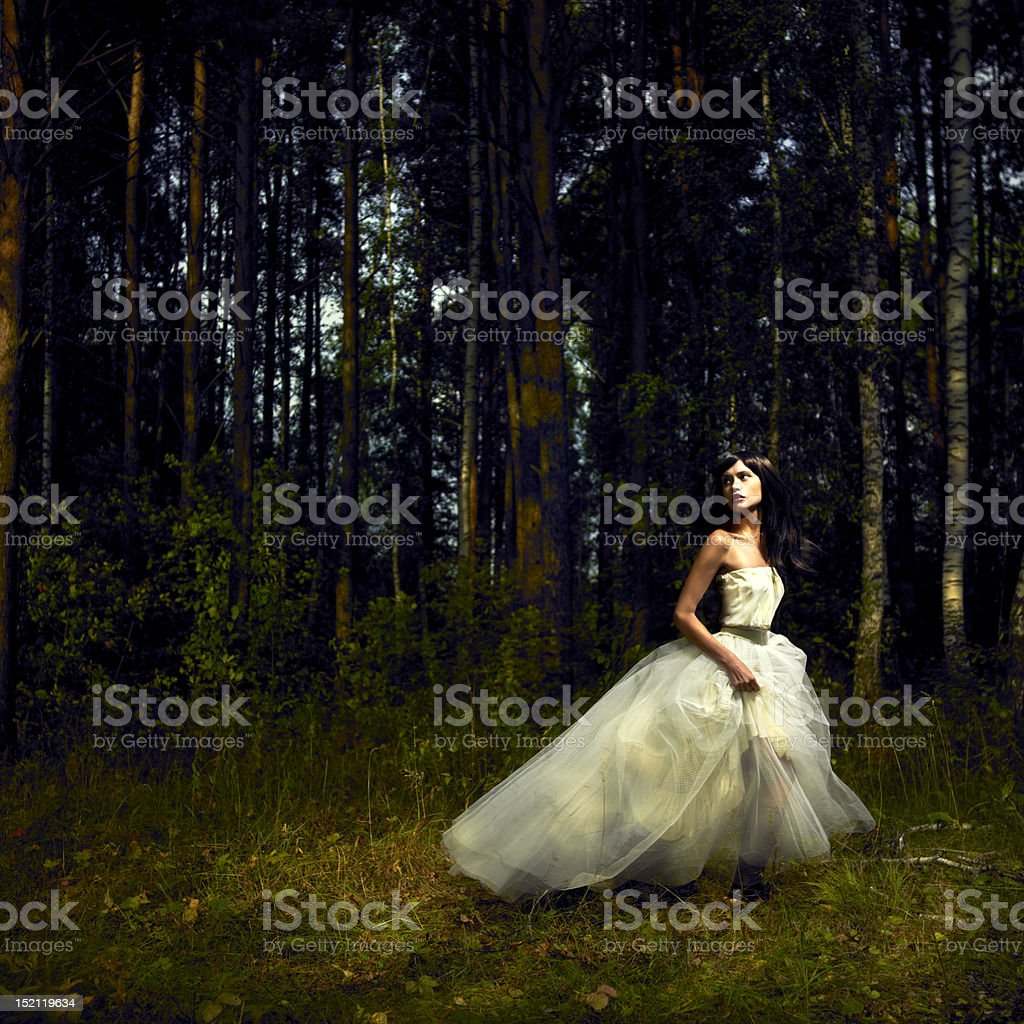 Romantic girl in fairy forest stock photo