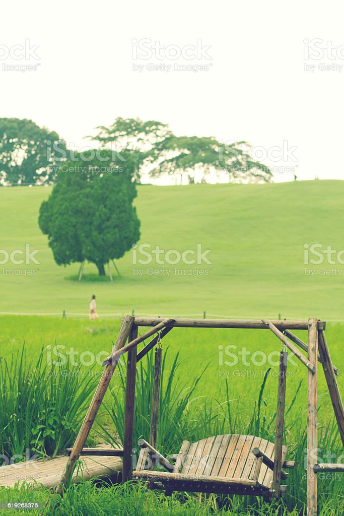 Romantic landscape single tree and trapeze stock photo