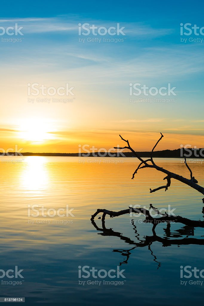 romantic light with reed and bay - lake in sunset stock photo