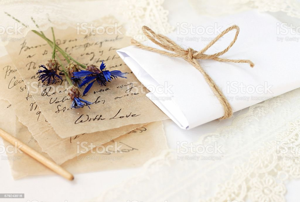 text unrecognizable. on parchment thin paper, blue dried meadow...