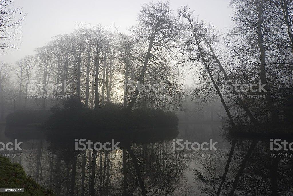 Romantic misty morning royalty-free stock photo