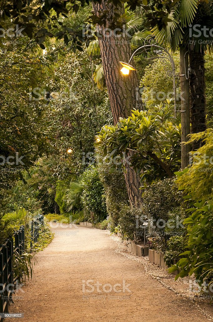 Romantic path stock photo