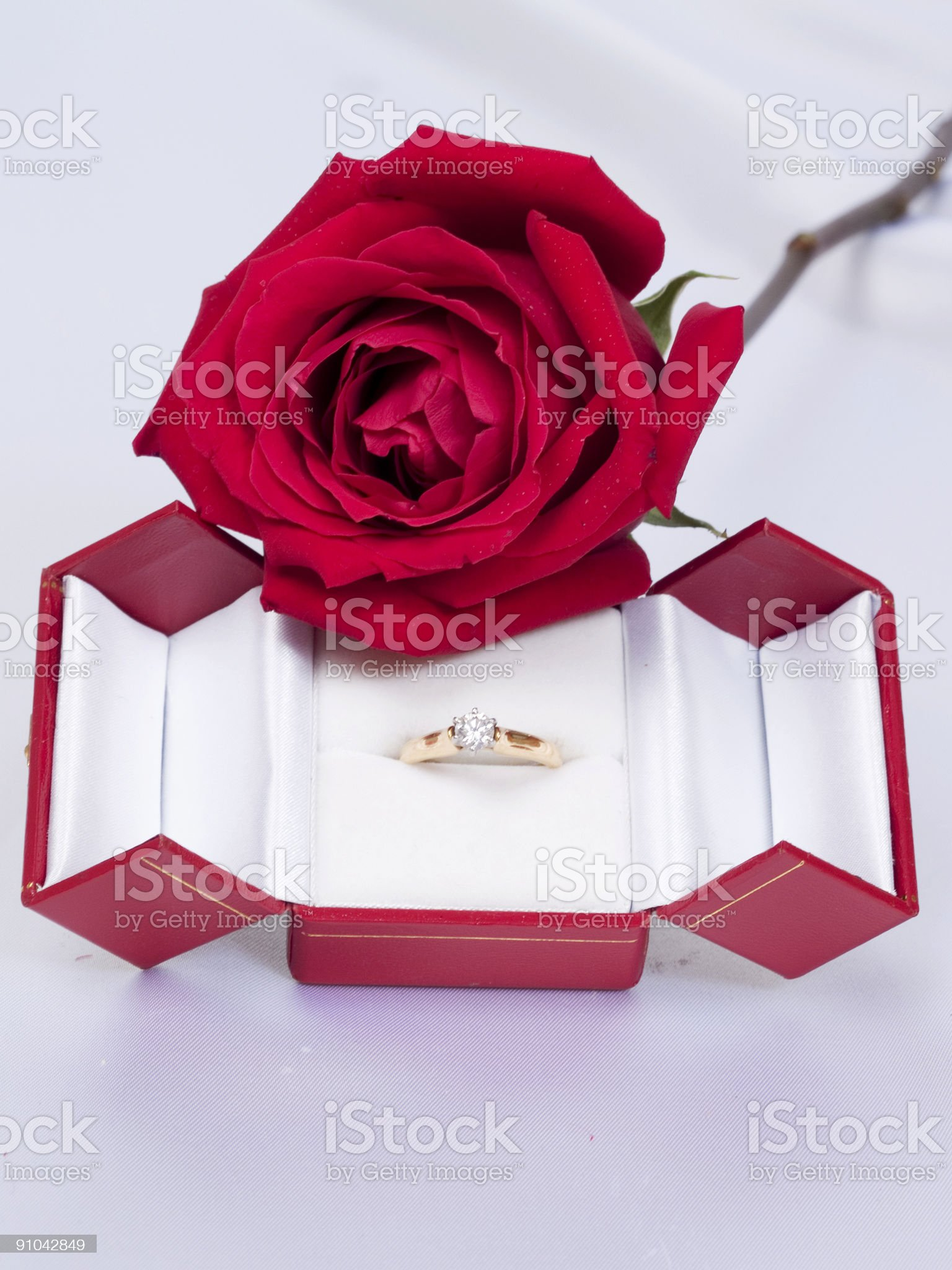 Romantic Proposal royalty-free stock photo